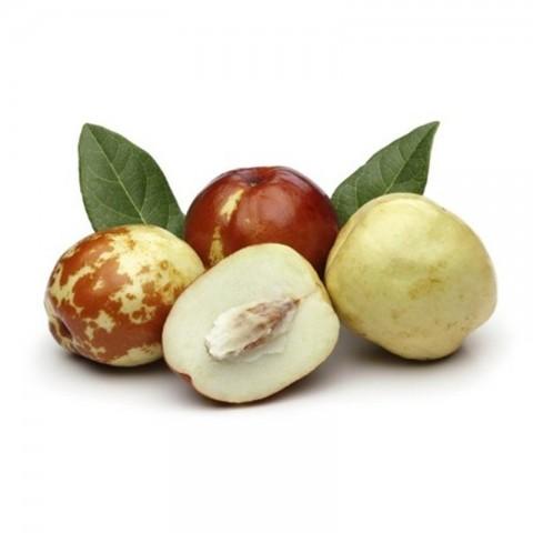 4 Yaş Aşılı İri Meyveli Hünnap Fidanı